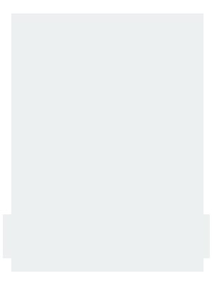 FlipStamp logo white